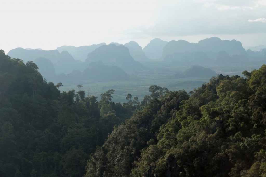 View from Krabi's upper temple